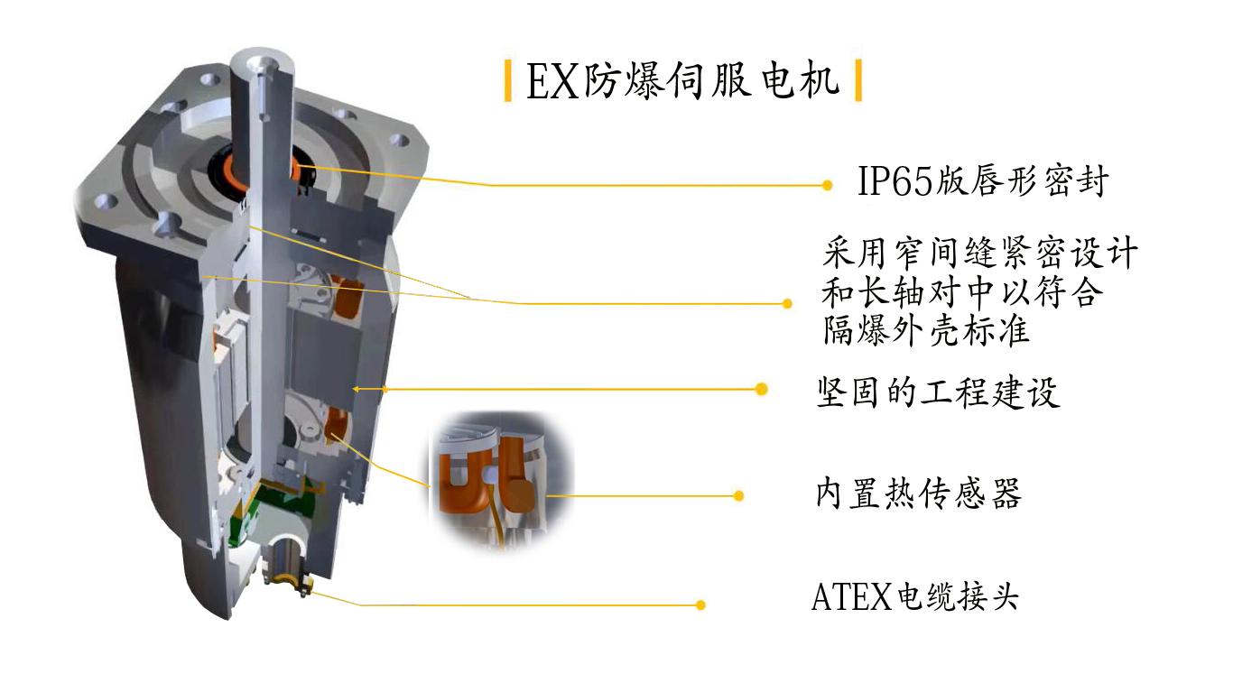 EX防爆伺服电机拆解.jpg