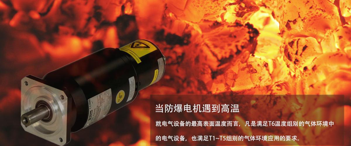防爆伺服电机温度T1还是T6哪个安全
